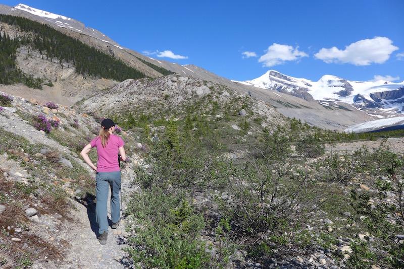 snowbird pass trail mount robson provincial park alicja gados photo